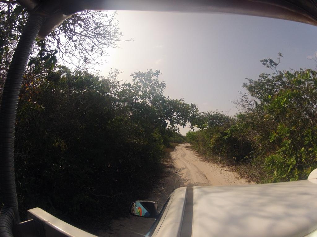 caminho em direção a Lagoa Bonita